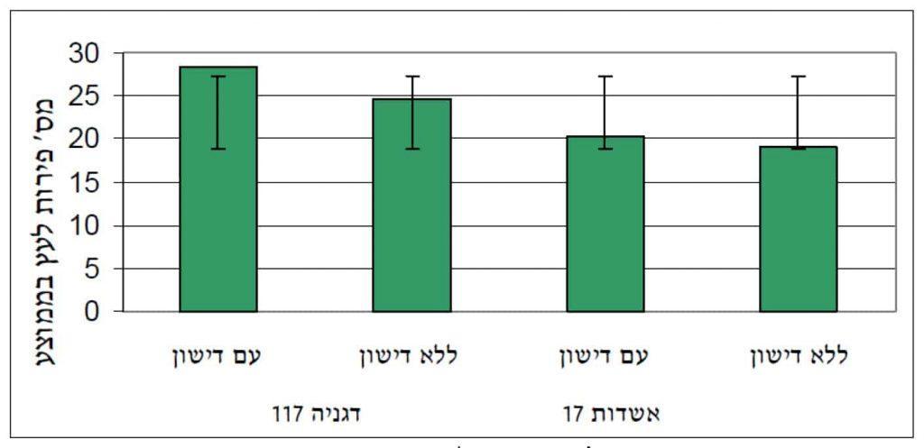 השוואה של מספר פירות בממוצע בין שני סוגי הכנות עם ובלי דישון