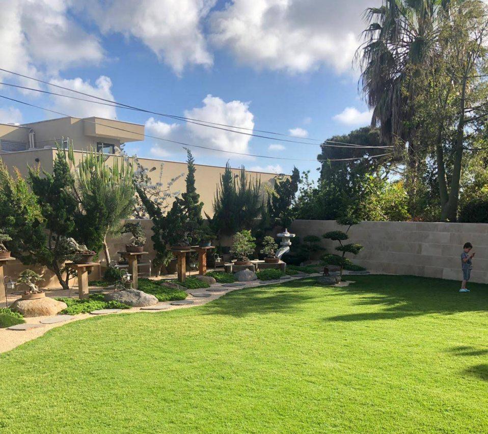 דשא ירוק בגינה פרטית עם עצי בונסאי