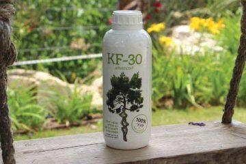 גינה מטופלת ב-KF-30