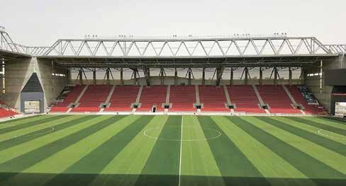 דשא ירוק וחזק באיצטדיון טוטו טרנר בבאר שבע